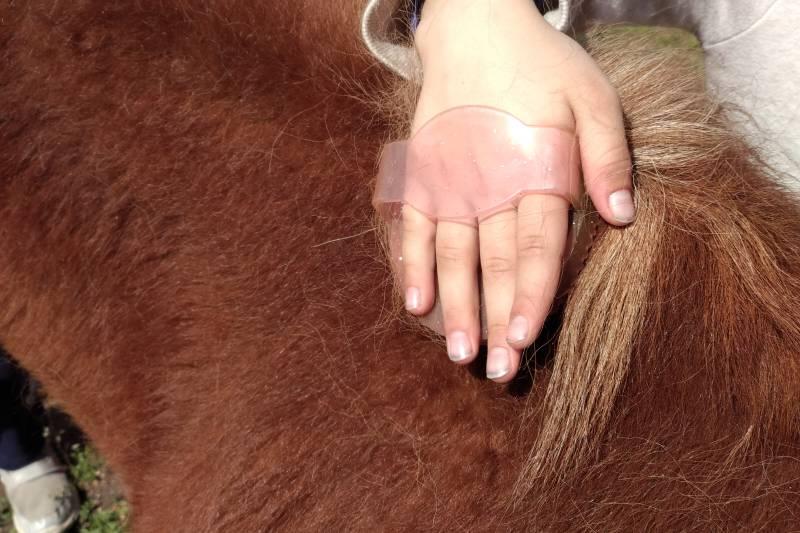 Pony kroužek